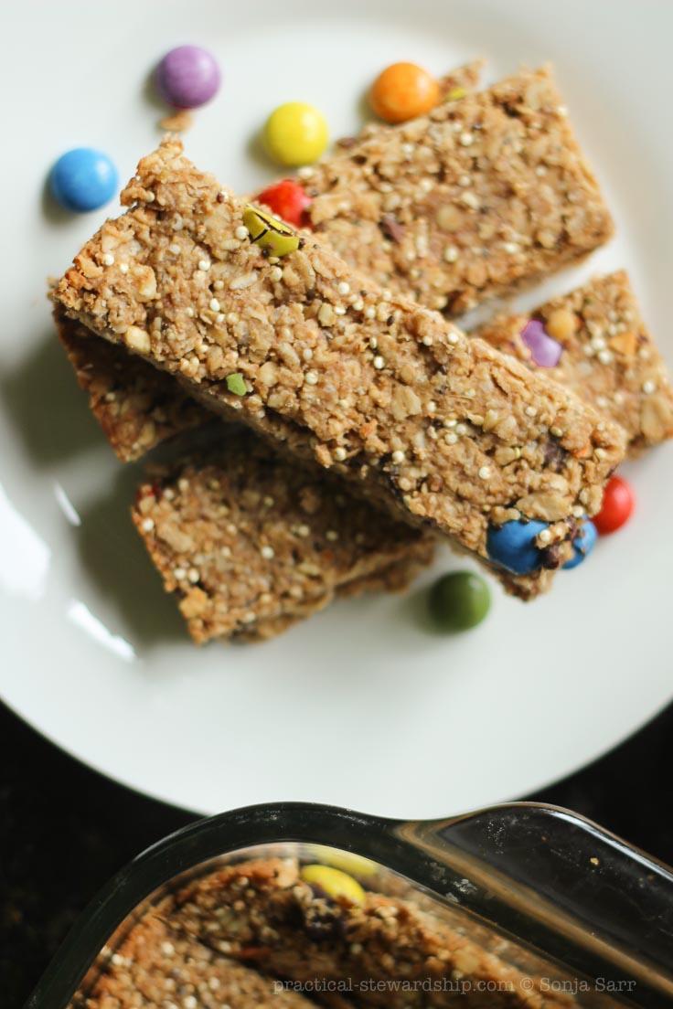 Chocolate Chip Peanut Butter Quinoa Granola Bar